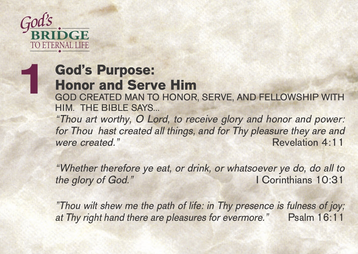 God Has A Purpose For You!